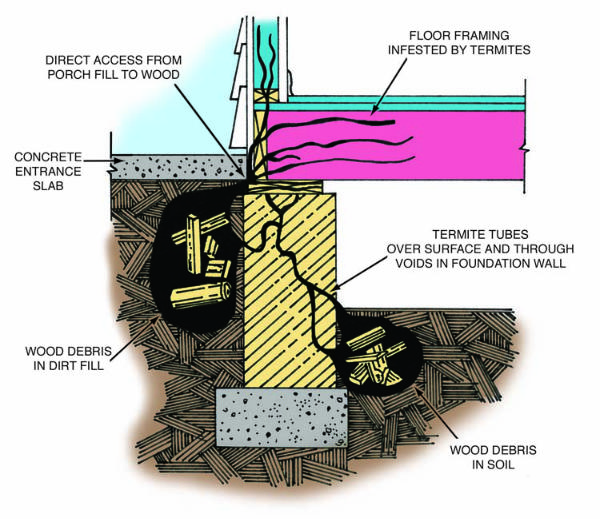 Diagram showing how termites live in the soil under and around a building and travel into the building to eat the wood